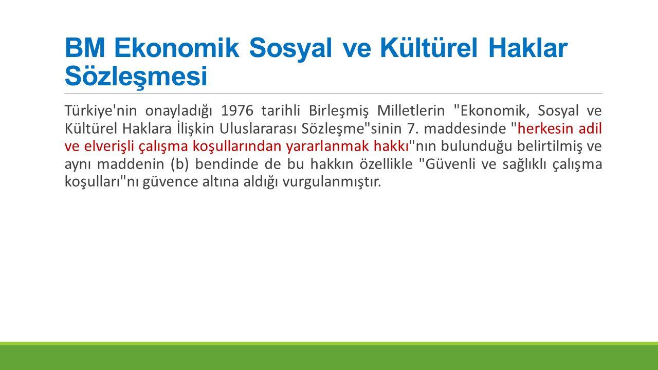 BM Ekonomik Sosyal ve Kültürel Haklar Sözleşmesi Türkiye'nin onayladığı 1976 tarihli Birleşmiş Milletlerin