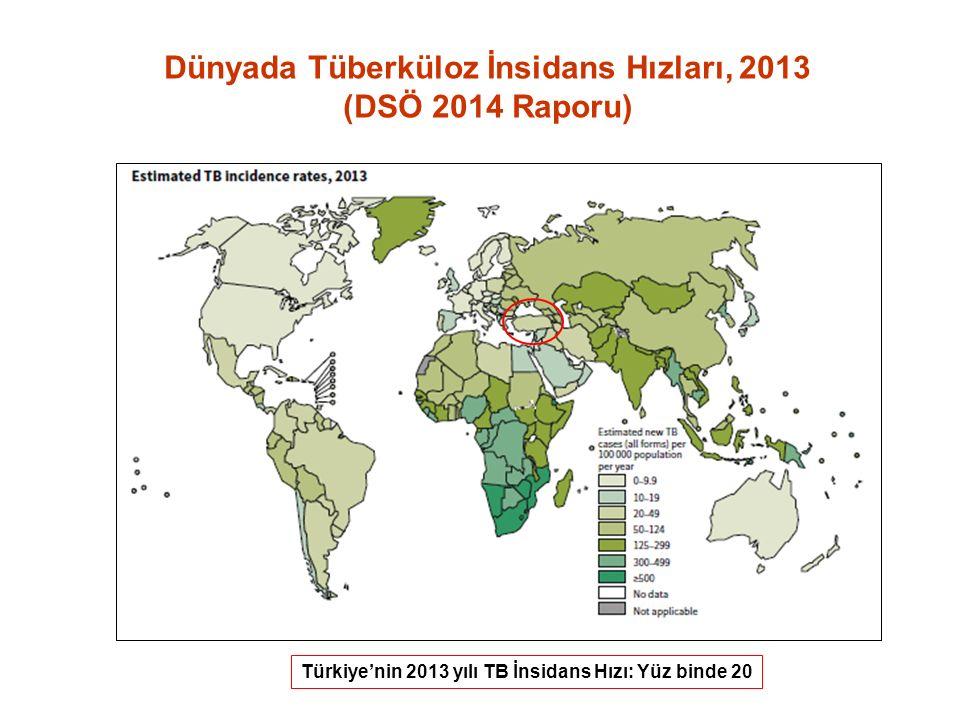Türkiye'nin 2013 yılı TB İnsidans Hızı: Yüz binde 20 Dünyada Tüberküloz İnsidans Hızları, 2013 (DSÖ 2014 Raporu)