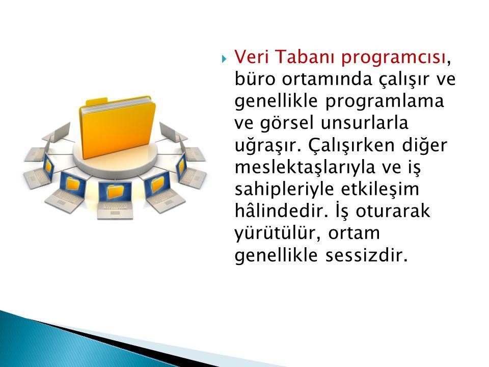  Veri Tabanı programcısı, büro ortamında çalışır ve genellikle programlama ve görsel unsurlarla uğraşır. Çalışırken diğer meslektaşlarıyla ve iş sahi