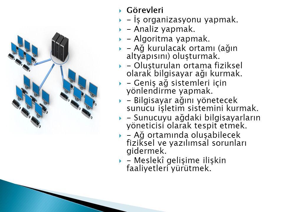  Görevleri  - İş organizasyonu yapmak.  - Analiz yapmak.  - Algoritma yapmak.  - Ağ kurulacak ortamı (ağın altyapısını) oluşturmak.  - Oluşturul