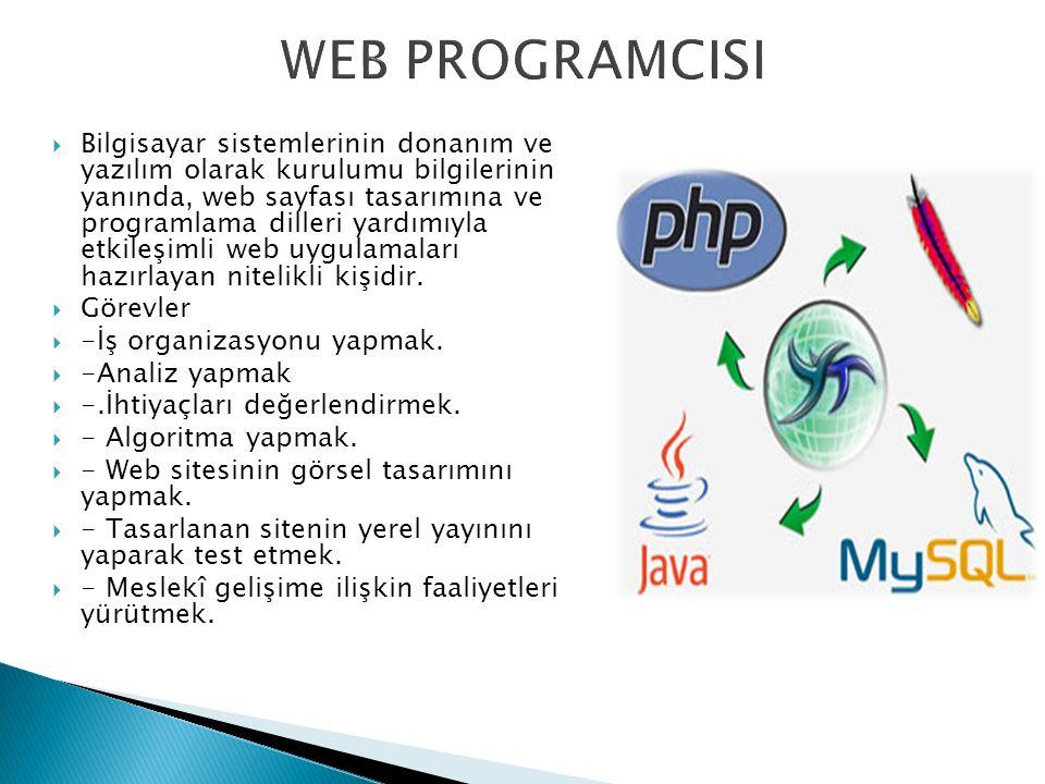  Bilgisayar sistemlerinin donanım ve yazılım olarak kurulumu bilgilerinin yanında, web sayfası tasarımına ve programlama dilleri yardımıyla etkileşimli web uygulamaları hazırlayan nitelikli kişidir.