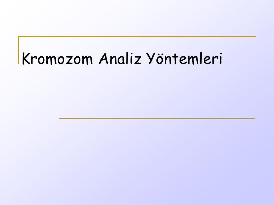 Tarihsel gelişimde sito-genetik İnsan sito-genetiği, 19.