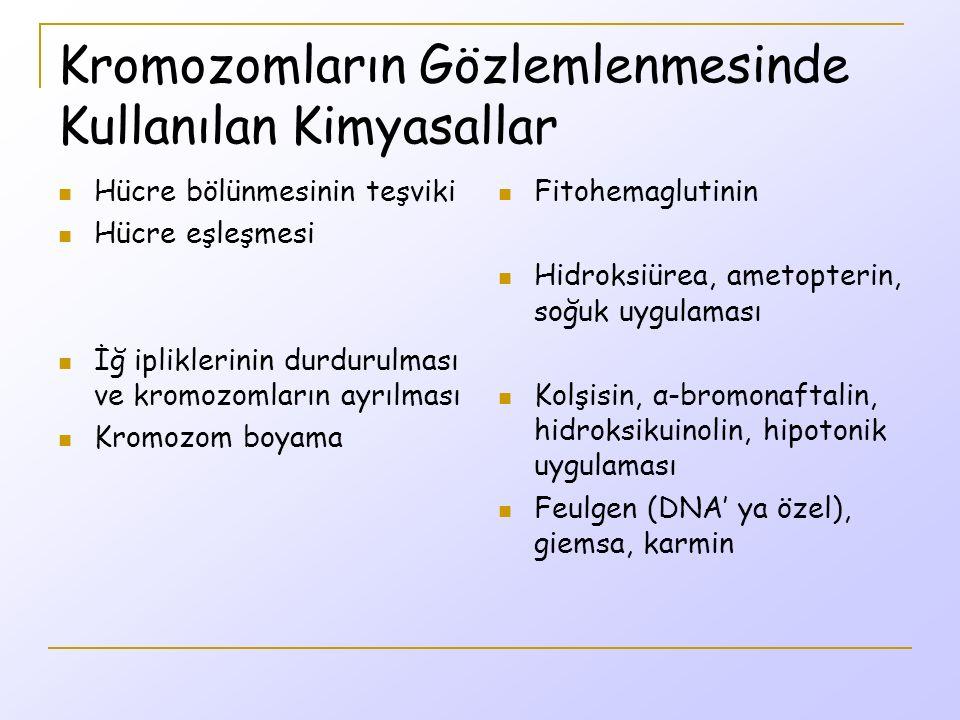 Kromozomların Gözlemlenmesinde Kullanılan Kimyasallar Hücre bölünmesinin teşviki Hücre eşleşmesi İğ ipliklerinin durdurulması ve kromozomların ayrılması Kromozom boyama Fitohemaglutinin Hidroksiürea, ametopterin, soğuk uygulaması Kolşisin, α-bromonaftalin, hidroksikuinolin, hipotonik uygulaması Feulgen (DNA' ya özel), giemsa, karmin