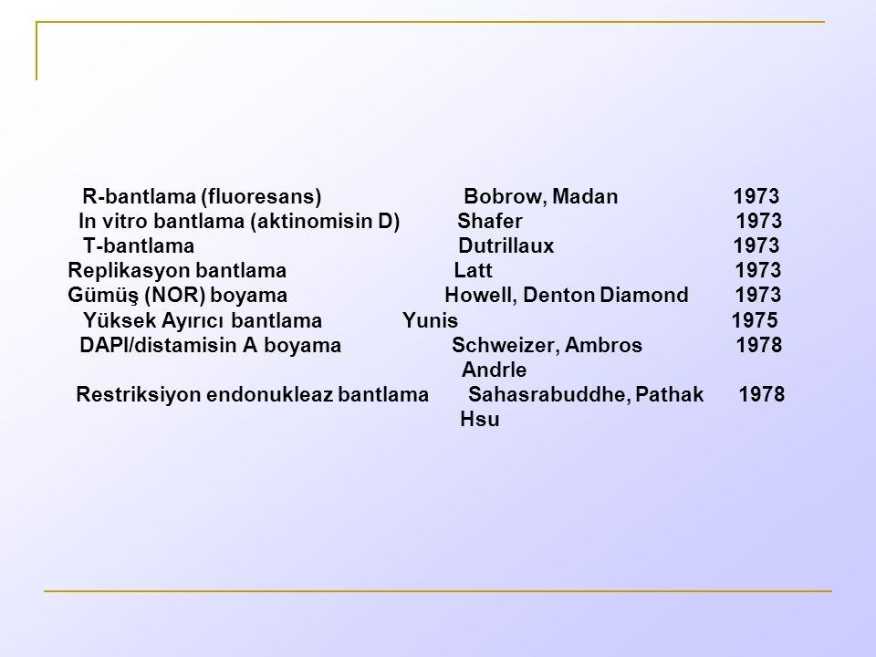 R-bantlama (fluoresans) Bobrow, Madan 1973 In vitro bantlama (aktinomisin D) Shafer 1973 T-bantlama Dutrillaux 1973 Replikasyon bantlama Latt 1973 Gümüş (NOR) boyama Howell, Denton Diamond 1973 Yüksek Ayırıcı bantlama Yunis 1975 DAPI/distamisin A boyama Schweizer, Ambros 1978 Andrle Restriksiyon endonukleaz bantlama Sahasrabuddhe, Pathak 1978 Hsu