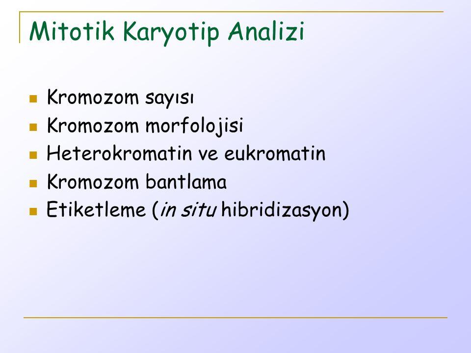 Mayotik Karyotip Analizi Kromozom sayısı Kromozom morfolojisi (mitotik karyotip analizinden daha ayrıntılı) Heterokromatin ve eukromatin (mitotik karyotip analizinden daha ayrıntılı) Kromozom bantlama Etiketleme (in situ hibridizasyon) Kromozom parça davranışı Gen anlatımı (kesin durumlarda)