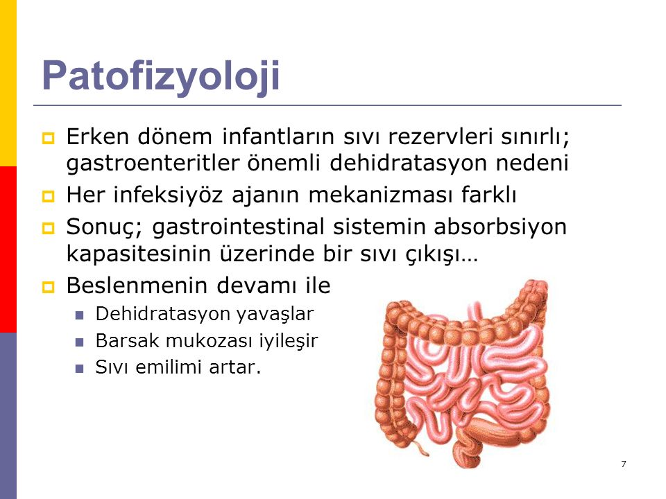 7 Patofizyoloji  Erken dönem infantların sıvı rezervleri sınırlı; gastroenteritler önemli dehidratasyon nedeni  Her infeksiyöz ajanın mekanizması fa