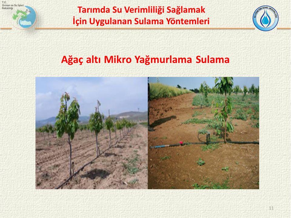 11 Ağaç altı Mikro Yağmurlama Sulama Tarımda Su Verimliliği Sağlamak İçin Uygulanan Sulama Yöntemleri