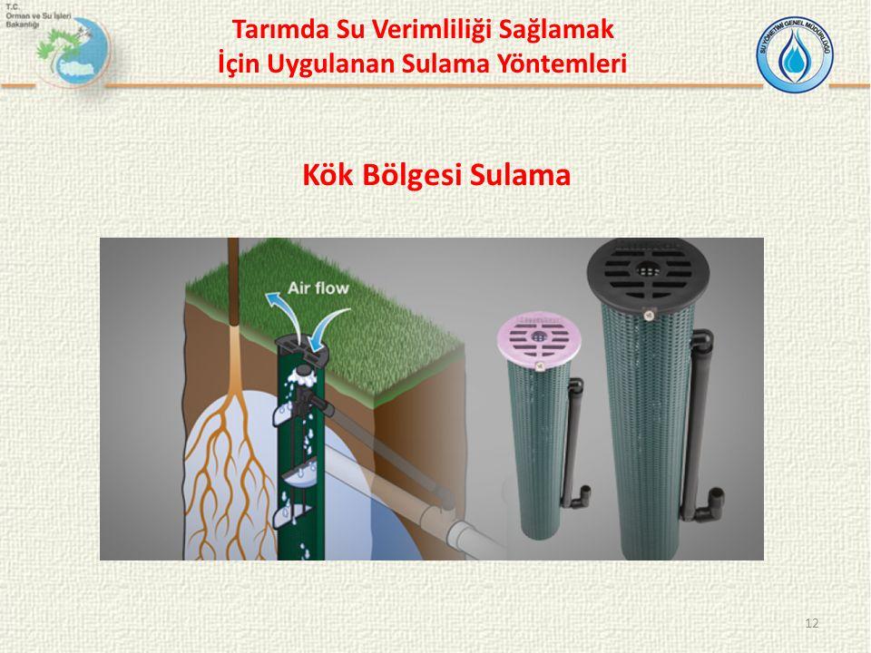 12 Kök Bölgesi Sulama Tarımda Su Verimliliği Sağlamak İçin Uygulanan Sulama Yöntemleri
