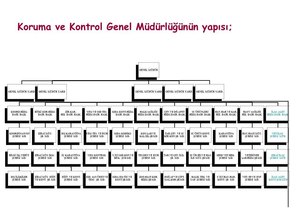 Koruma ve Kontrol Genel Müdürlüğünün yapısı;