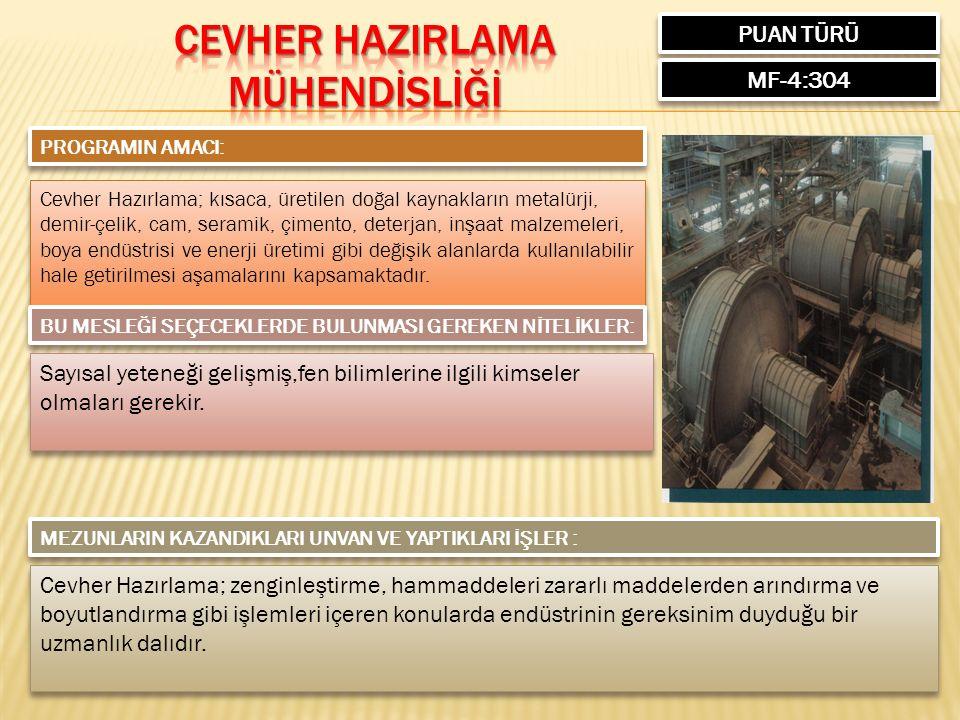 PUAN TÜRÜ MF-4:304 PROGRAMIN AMACI: Cevher Hazırlama; kısaca, üretilen doğal kaynakların metalürji, demir-çelik, cam, seramik, çimento, deterjan, inşa