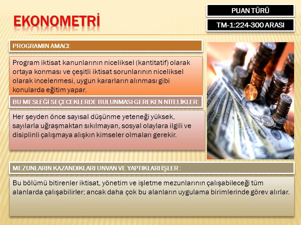 PUAN TÜRÜ TM-1:224-300 ARASI PROGRAMIN AMACI: Program iktisat kanunlarının niceliksel (kantitatif) olarak ortaya konması ve çeşitli iktisat sorunların