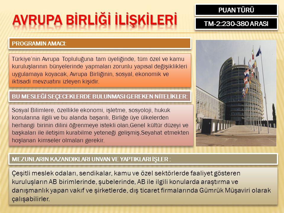PUAN TÜRÜ TM-2:230-380 ARASI PROGRAMIN AMACI: Türkiye'nin Avrupa Topluluğuna tam üyeliğinde, tüm özel ve kamu kuruluşlarının bünyelerinde yapmaları zo