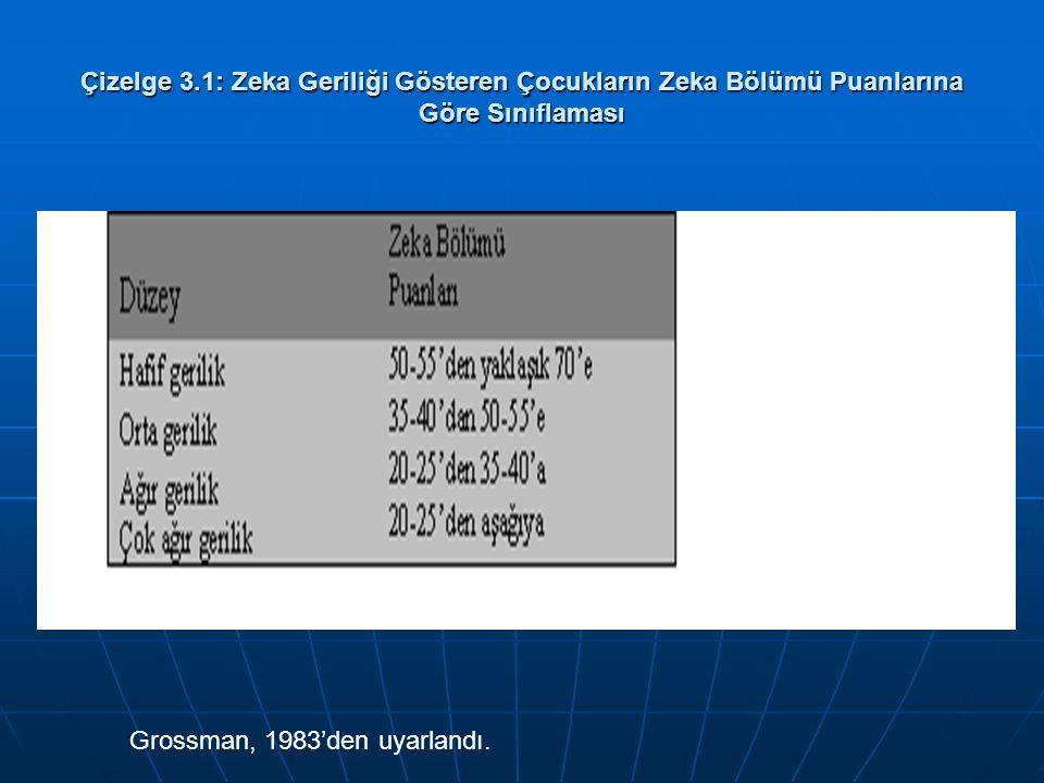 Çizelge 3.1: Zeka Geriliği Gösteren Çocukların Zeka Bölümü Puanlarına Göre Sınıflaması Grossman, 1983'den uyarlandı.