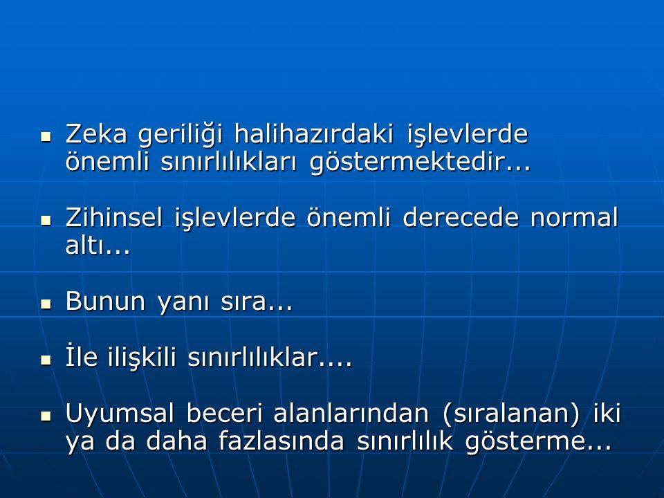 Türkiye'deki Sınıflandırma Biçimleri (devam)  18.12.2004 tarihinde Milli Eğitim Bakanlığı Özel Eğitim Hizmetleri Yönetmeliği'nde değişiklik yapılmazsına dair yönetmelikte zihinsel yetersizlik terimi altında, zihin özürlü bireyler şöyle sınıflandırılmıştır: 1.Hafif düzeyde zihinsel yetersizlik 2.Orta düzeyde zihinsel yetersizlik 3.Ağır düzeyde zihinsel yetersizlik 4.Çok ağır düzeyde zihinsel yetersizlik