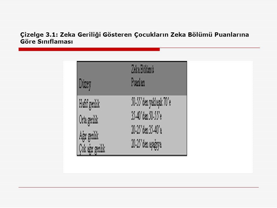 Çizelge 3.1: Zeka Geriliği Gösteren Çocukların Zeka Bölümü Puanlarına Göre Sınıflaması
