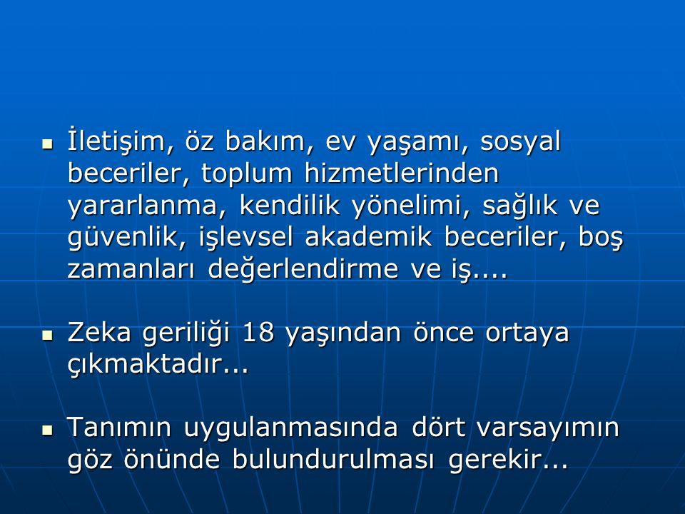Türkiye'deki Sınıflandırma Biçimleri (devam)  Hafif Düzeyde Zihinsel Yetersizlik: Bireyin, eğitim dönemi içinde, sınırlı seviyede destek eğitim hizmetleri ve özel düzenlemelere ihtiyacı olması durumu.