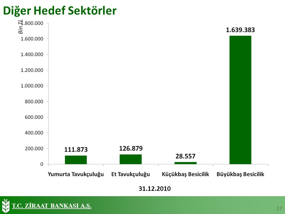 T.C. ZİRAAT BANKASI A.Ş. Diğer Hedef Sektörler 27 31.12.2010