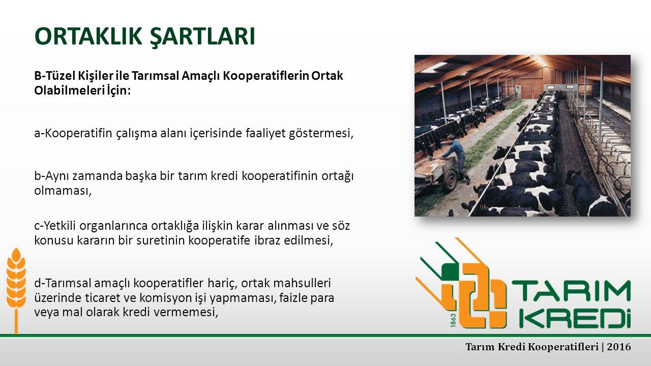 ORTAKLIK ŞARTLARI B-Tüzel Kişiler ile Tarımsal Amaçlı Kooperatiflerin Ortak Olabilmeleri İçin: a-Kooperatifin çalışma alanı içerisinde faaliyet göster