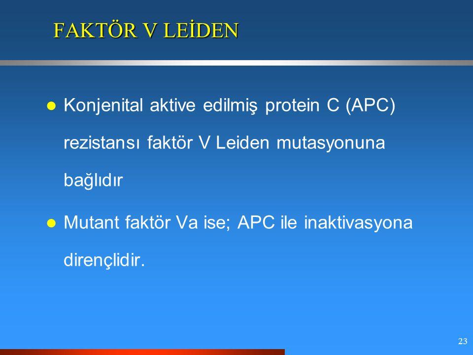 23 FAKTÖR V LEİDEN Konjenital aktive edilmiş protein C (APC) rezistansı faktör V Leiden mutasyonuna bağlıdır Mutant faktör Va ise; APC ile inaktivasyona dirençlidir.