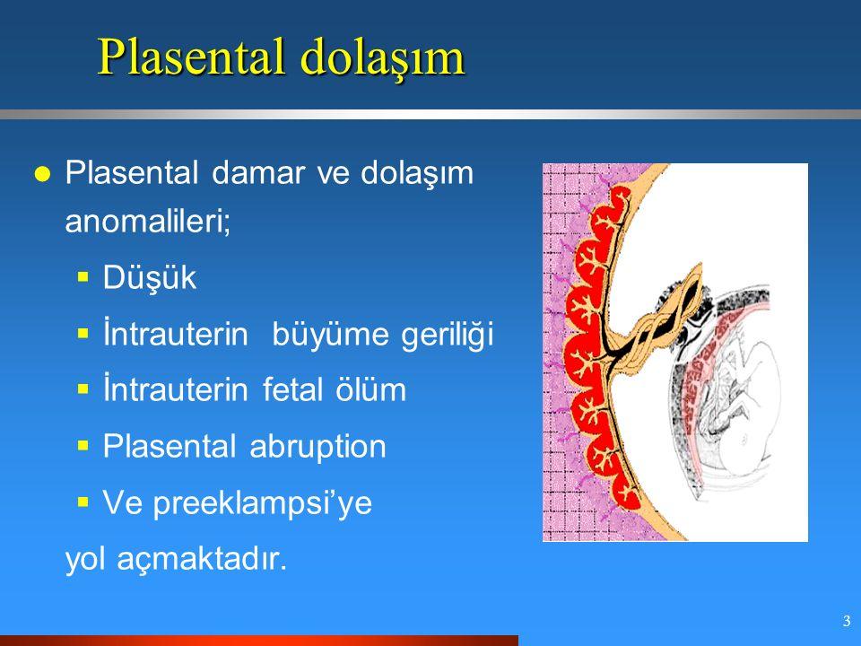 3 Plasental dolaşım Plasental damar ve dolaşım anomalileri;  Düşük  İntrauterin büyüme geriliği  İntrauterin fetal ölüm  Plasental abruption  Ve preeklampsi'ye yol açmaktadır.