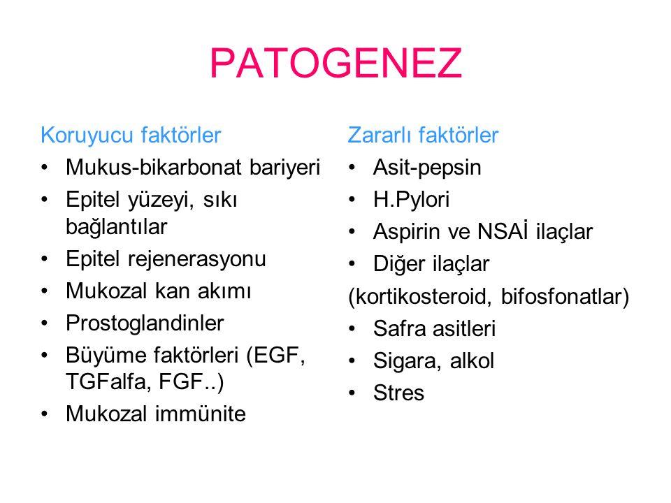 PATOGENEZ Koruyucu faktörler Mukus-bikarbonat bariyeri Epitel yüzeyi, sıkı bağlantılar Epitel rejenerasyonu Mukozal kan akımı Prostoglandinler Büyüme faktörleri (EGF, TGFalfa, FGF..) Mukozal immünite Zararlı faktörler Asit-pepsin H.Pylori Aspirin ve NSAİ ilaçlar Diğer ilaçlar (kortikosteroid, bifosfonatlar) Safra asitleri Sigara, alkol Stres