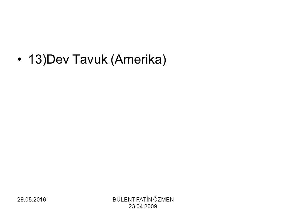 29.05.2016BÜLENT FATİN ÖZMEN 23 04 2009 13)Dev Tavuk (Amerika)