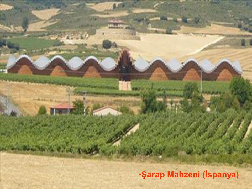 29.05.2016BÜLENT FATİN ÖZMEN 23 04 2009 Şarap Mahzeni (İspanya)