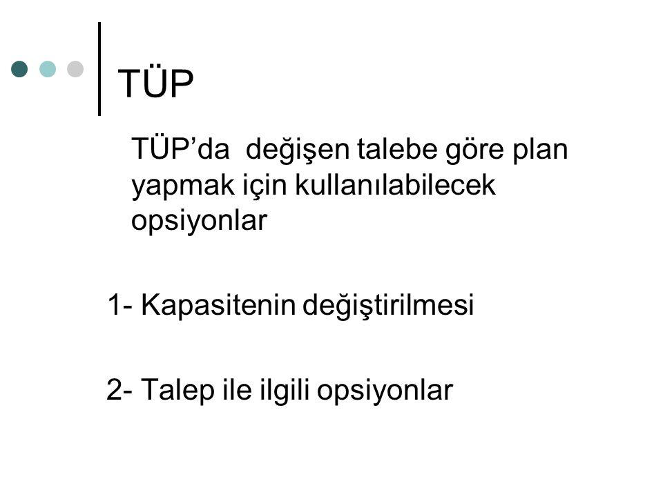 TÜP TÜP'da değişen talebe göre plan yapmak için kullanılabilecek opsiyonlar 1- Kapasitenin değiştirilmesi 2- Talep ile ilgili opsiyonlar