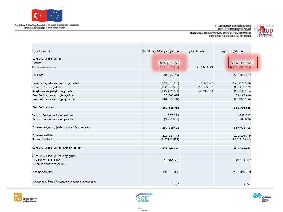 Türk Lirası (TL)%100 Kayıtlı Çalışan İşletmeİşçilik GiderleriKayıtdışı Çalışırsa Sürdürülen faaliyetler Hasılat8.103.128.2257.660.476.012 Satışların m
