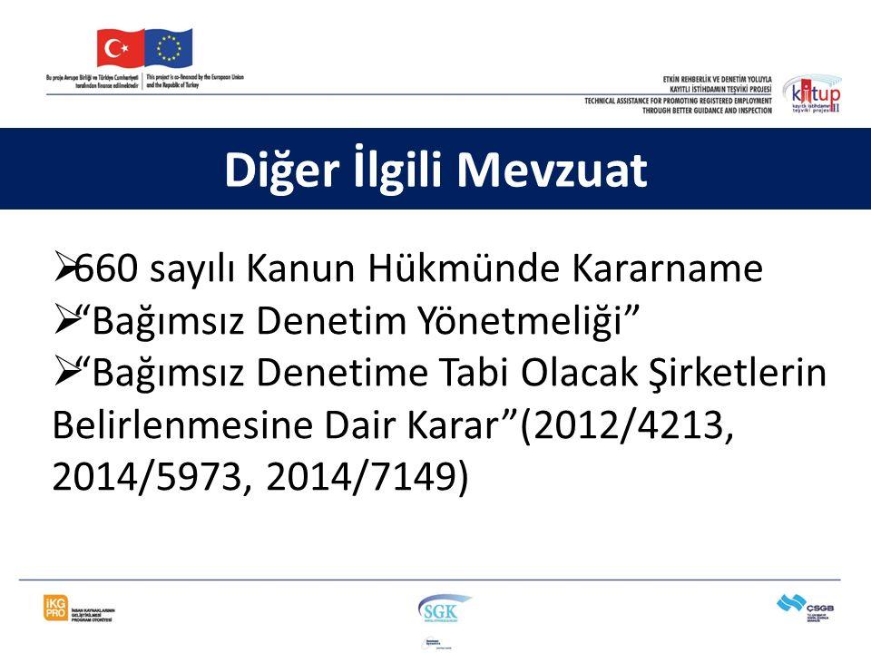 """ 660 sayılı Kanun Hükmünde Kararname  """"Bağımsız Denetim Yönetmeliği""""  """"Bağımsız Denetime Tabi Olacak Şirketlerin Belirlenmesine Dair Karar""""(2012/42"""