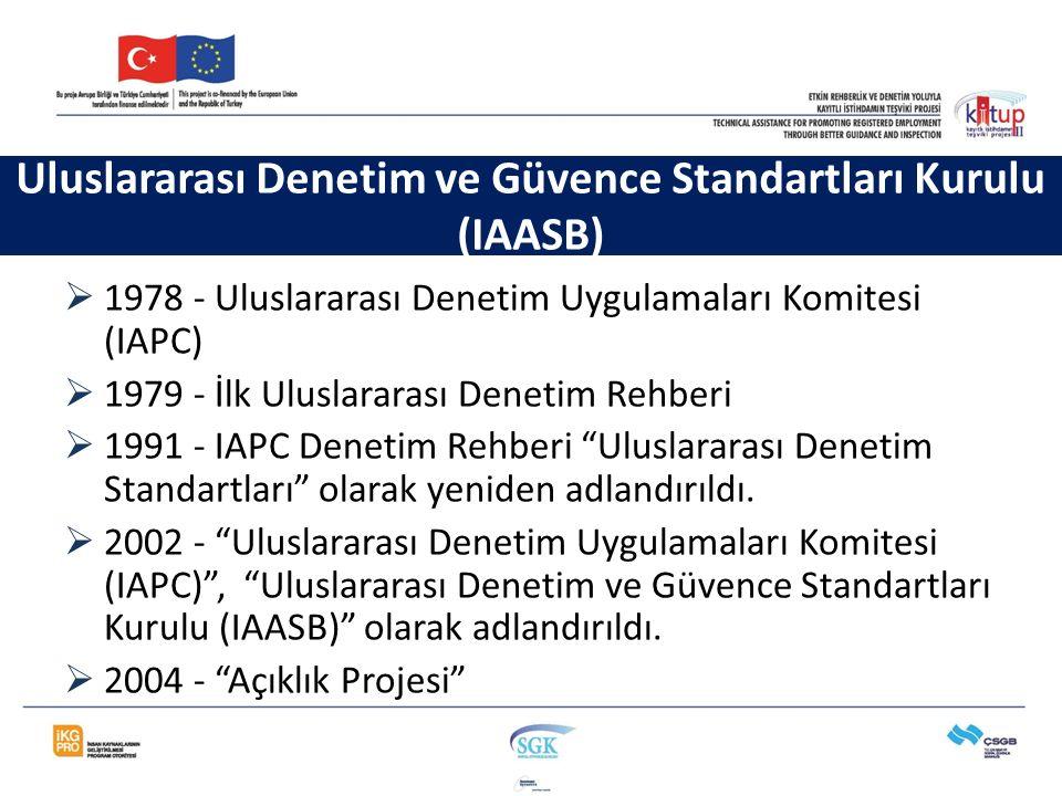 Uluslararası Denetim ve Güvence Standartları Kurulu (IAASB)  1978 - Uluslararası Denetim Uygulamaları Komitesi (IAPC)  1979 - İlk Uluslararası Denet