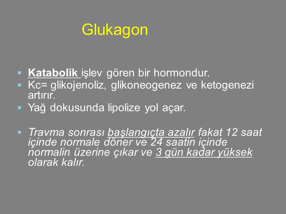  Katabolik işlev gören bir hormondur.  Kc= glikojenoliz, glikoneogenez ve ketogenezi artırır.  Yağ dokusunda lipolize yol açar.  Travma sonrası ba