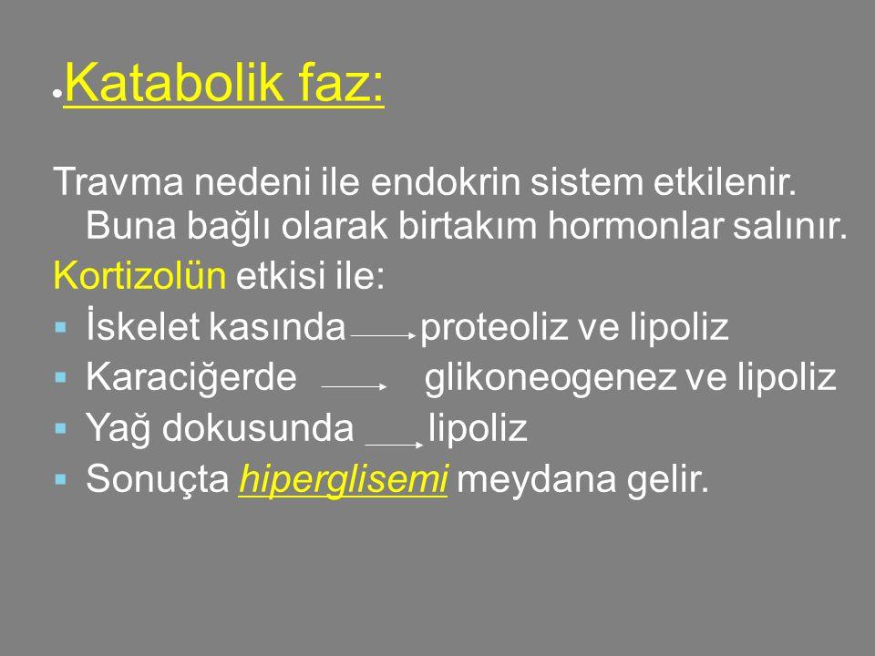  Katabolik faz: Travma nedeni ile endokrin sistem etkilenir. Buna bağlı olarak birtakım hormonlar salınır. Kortizolün etkisi ile:  İskelet kasında p