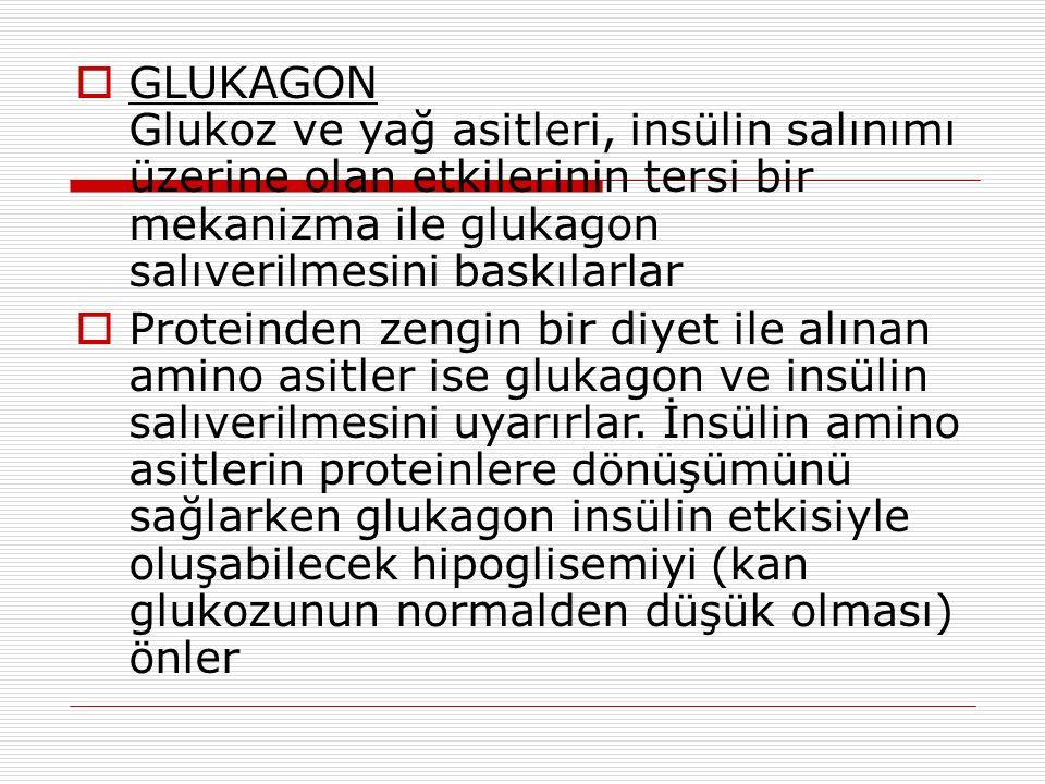  GLUKAGON Glukoz ve yağ asitleri, insülin salınımı üzerine olan etkilerinin tersi bir mekanizma ile glukagon salıverilmesini baskılarlar  Proteinden zengin bir diyet ile alınan amino asitler ise glukagon ve insülin salıverilmesini uyarırlar.