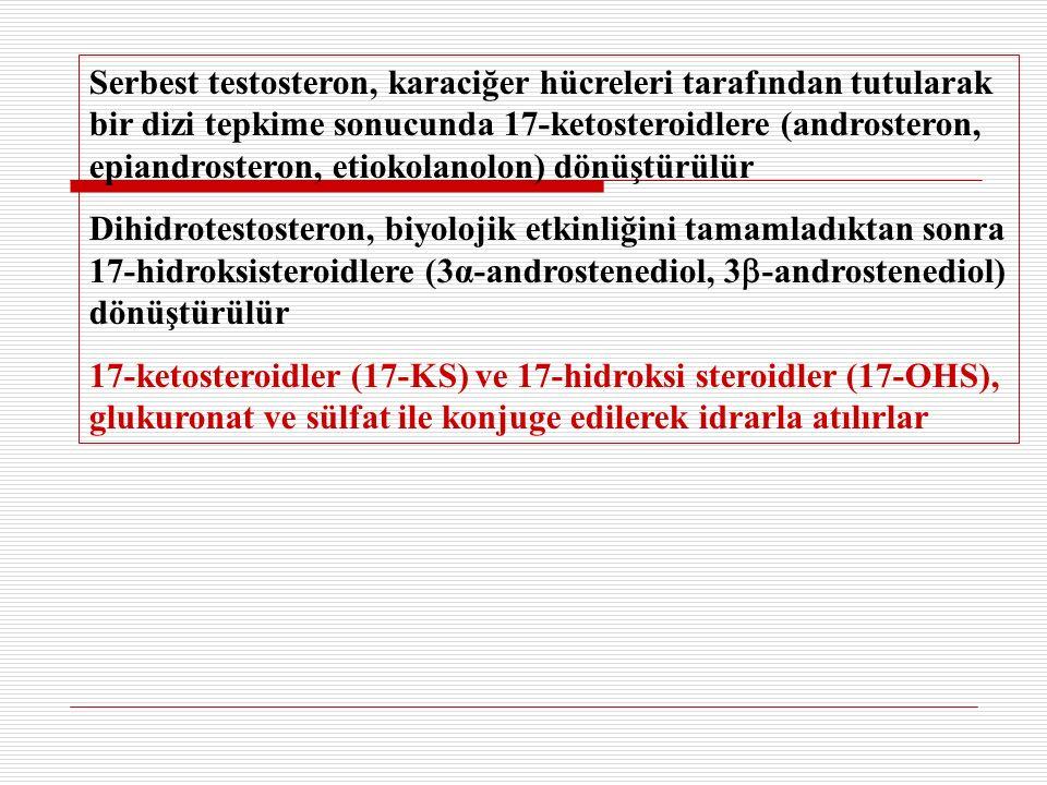 Serbest testosteron, karaciğer hücreleri tarafından tutularak bir dizi tepkime sonucunda 17-ketosteroidlere (androsteron, epiandrosteron, etiokolanolon) dönüştürülür Dihidrotestosteron, biyolojik etkinliğini tamamladıktan sonra 17-hidroksisteroidlere (3α-androstenediol, 3  -androstenediol) dönüştürülür 17-ketosteroidler (17-KS) ve 17-hidroksi steroidler (17-OHS), glukuronat ve sülfat ile konjuge edilerek idrarla atılırlar