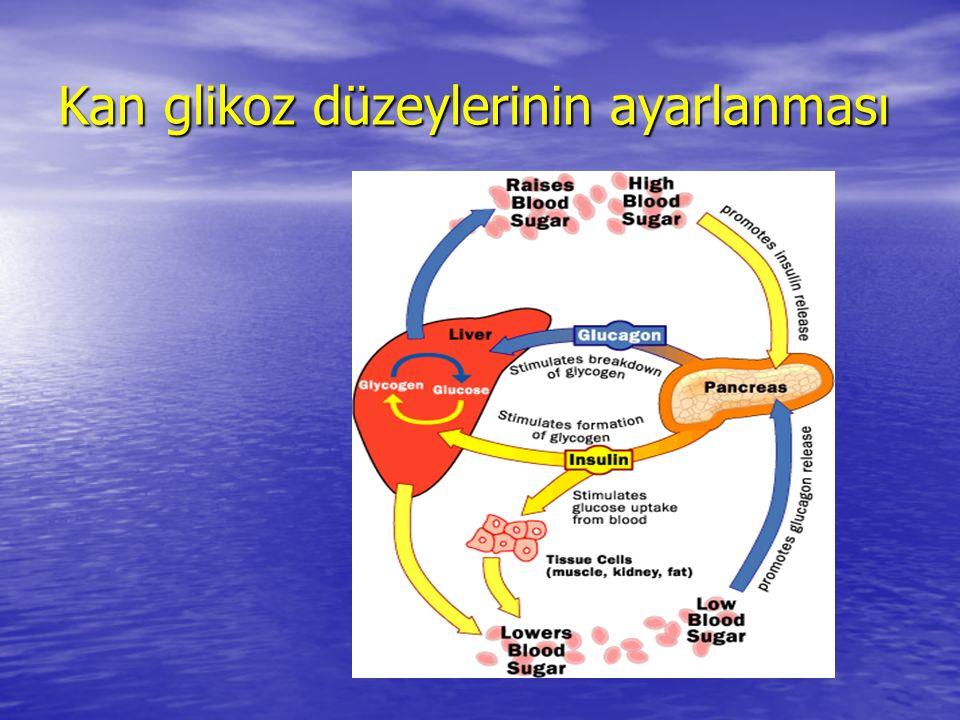 Kan glikoz düzeylerinin ayarlanması