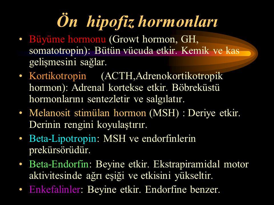 Ön hipofiz hormonları Büyüme hormonu (Growt hormon, GH, somatotropin): Bütün vücuda etkir. Kemik ve kas gelişmesini sağlar. Kortikotropin(ACTH,Adrenok