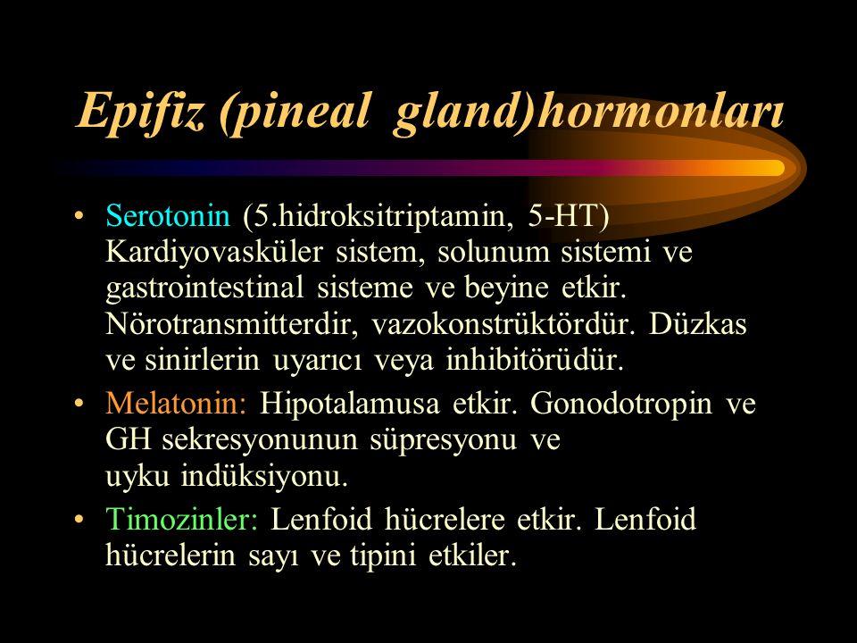 Epifiz (pineal gland)hormonları Serotonin (5.hidroksitriptamin, 5-HT) Kardiyovasküler sistem, solunum sistemi ve gastrointestinal sisteme ve beyine et