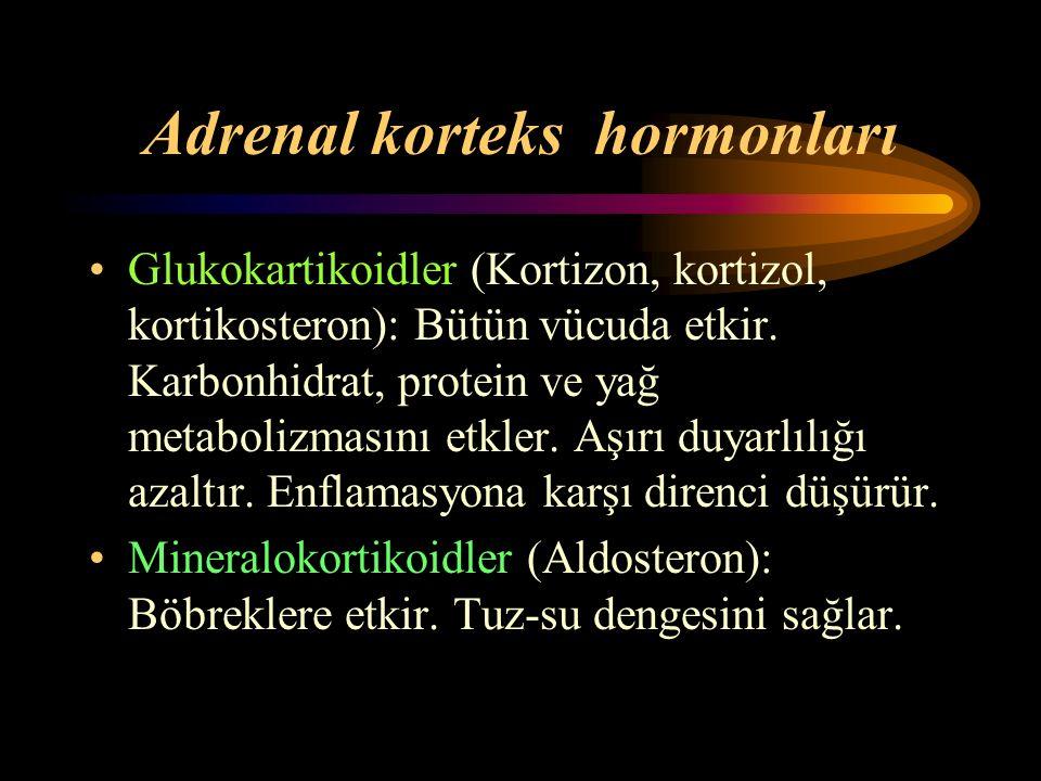 Adrenal korteks hormonları Glukokartikoidler (Kortizon, kortizol, kortikosteron): Bütün vücuda etkir. Karbonhidrat, protein ve yağ metabolizmasını etk