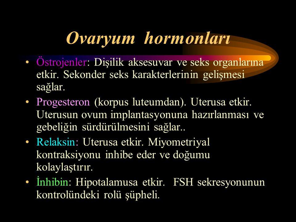 Ovaryum hormonları Östrojenler: Dişilik aksesuvar ve seks organlarına etkir. Sekonder seks karakterlerinin gelişmesi sağlar. Progesteron (korpus luteu