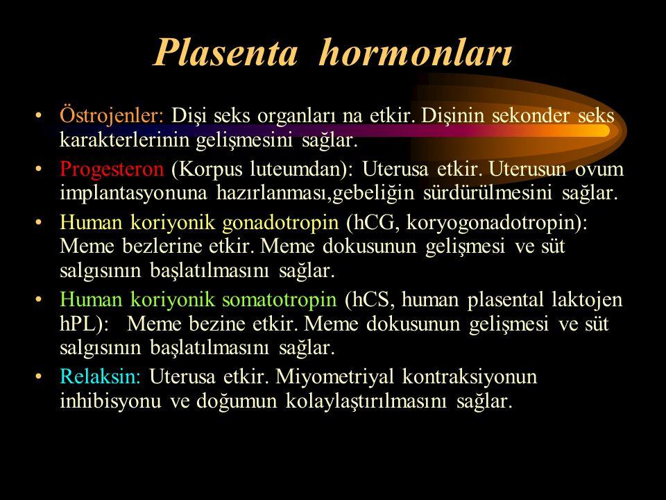 Plasenta hormonları Östrojenler: Dişi seks organları na etkir. Dişinin sekonder seks karakterlerinin gelişmesini sağlar. Progesteron (Korpus luteumdan