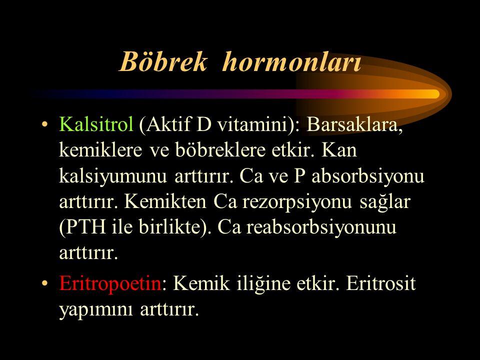 Böbrek hormonları Kalsitrol (Aktif D vitamini): Barsaklara, kemiklere ve böbreklere etkir. Kan kalsiyumunu arttırır. Ca ve P absorbsiyonu arttırır. Ke