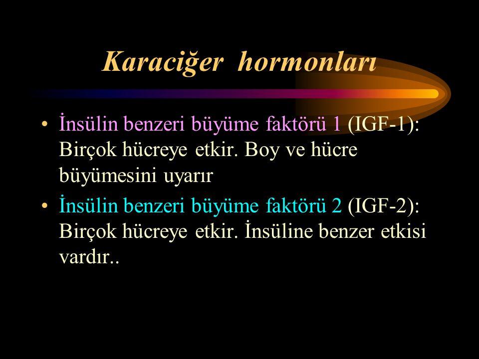Karaciğer hormonları İnsülin benzeri büyüme faktörü 1 (IGF-1): Birçok hücreye etkir. Boy ve hücre büyümesini uyarır İnsülin benzeri büyüme faktörü 2 (