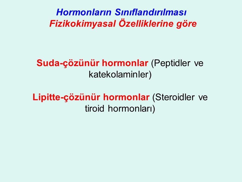 Hormonların Sınıflandırılması Fizikokimyasal Özelliklerine göre Suda-çözünür hormonlar (Peptidler ve katekolaminler) Lipitte-çözünür hormonlar (Steroidler ve tiroid hormonları)