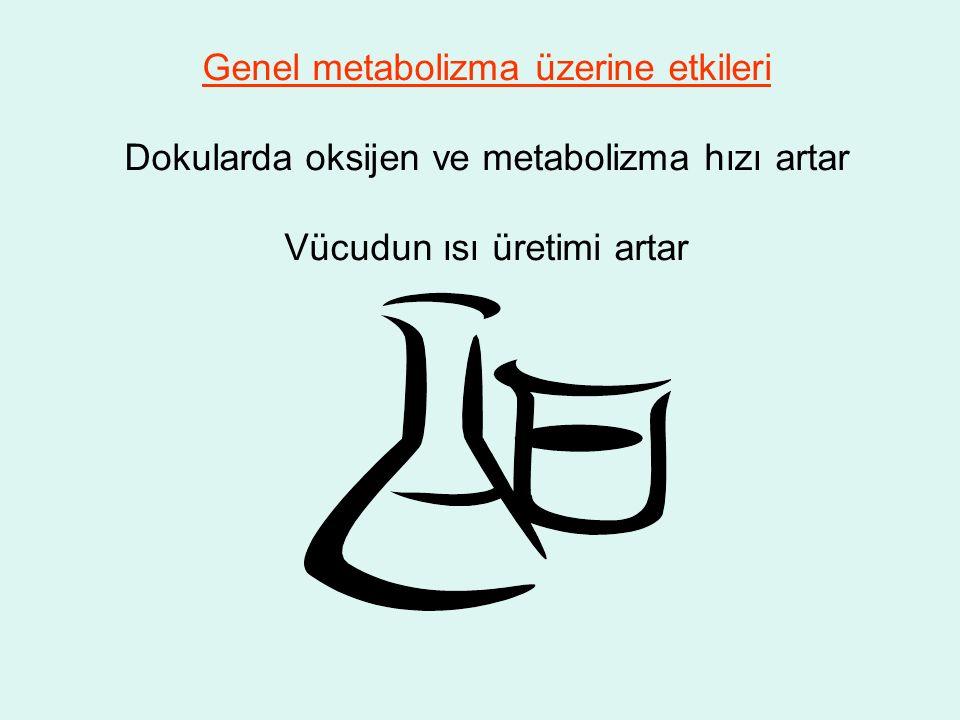 Genel metabolizma üzerine etkileri Dokularda oksijen ve metabolizma hızı artar Vücudun ısı üretimi artar