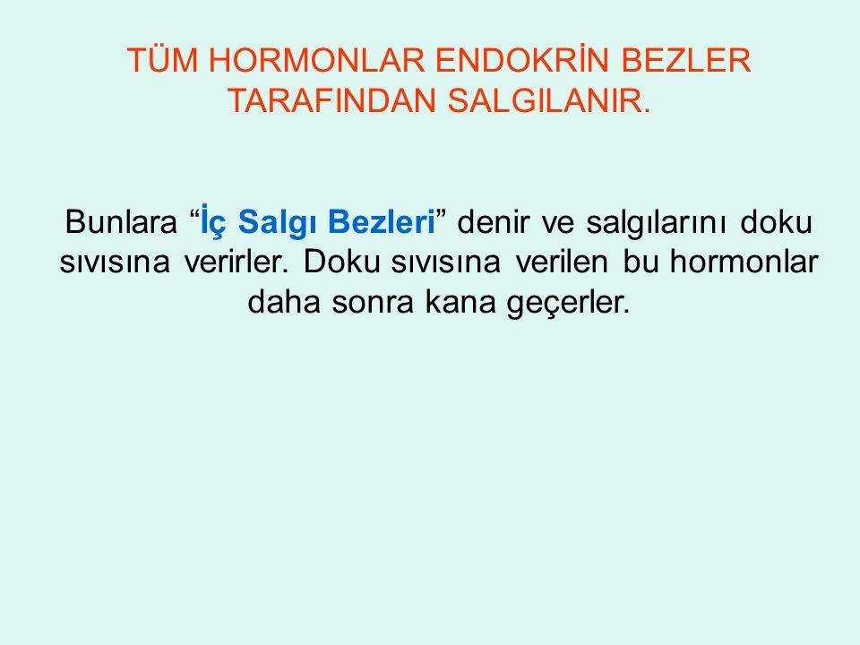 TÜM HORMONLAR ENDOKRİN BEZLER TARAFINDAN SALGILANIR.