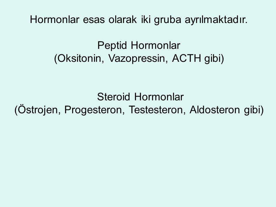Hormonlar esas olarak iki gruba ayrılmaktadır.