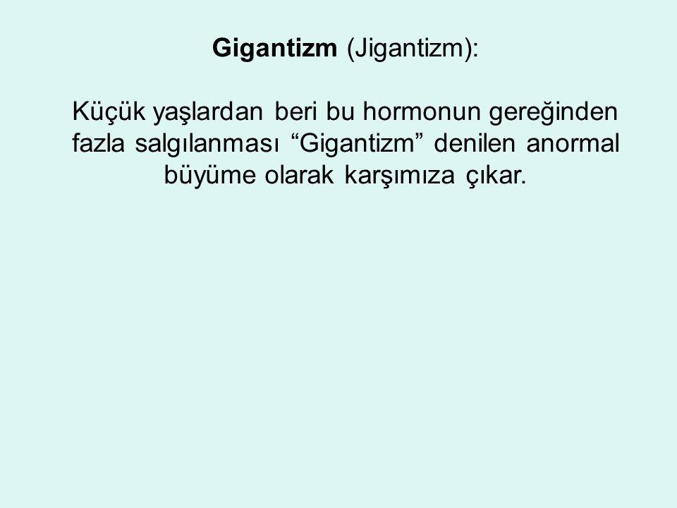 Gigantizm (Jigantizm): Küçük yaşlardan beri bu hormonun gereğinden fazla salgılanması Gigantizm denilen anormal büyüme olarak karşımıza çıkar.