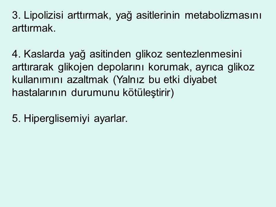 3. Lipolizisi arttırmak, yağ asitlerinin metabolizmasını arttırmak.