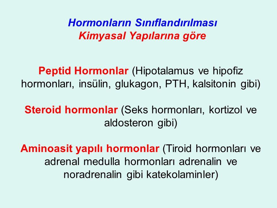 Hormonların Sınıflandırılması Kimyasal Yapılarına göre Peptid Hormonlar (Hipotalamus ve hipofiz hormonları, insülin, glukagon, PTH, kalsitonin gibi) Steroid hormonlar (Seks hormonları, kortizol ve aldosteron gibi) Aminoasit yapılı hormonlar (Tiroid hormonları ve adrenal medulla hormonları adrenalin ve noradrenalin gibi katekolaminler)